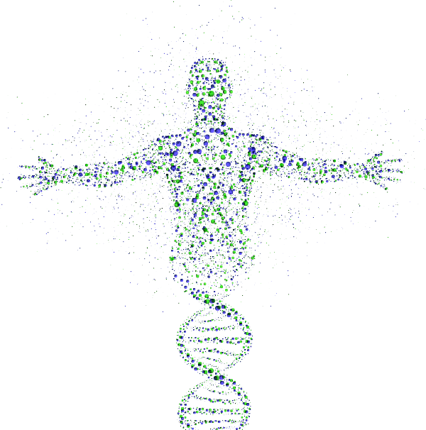 THE HUMAN EPIGENOME ATLAS